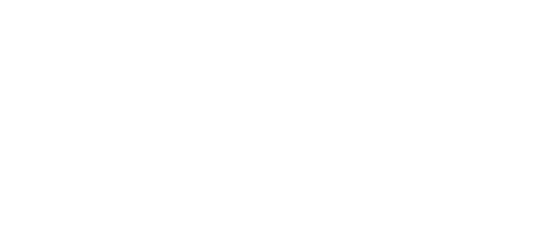 Supporting Housing for People with Special needs